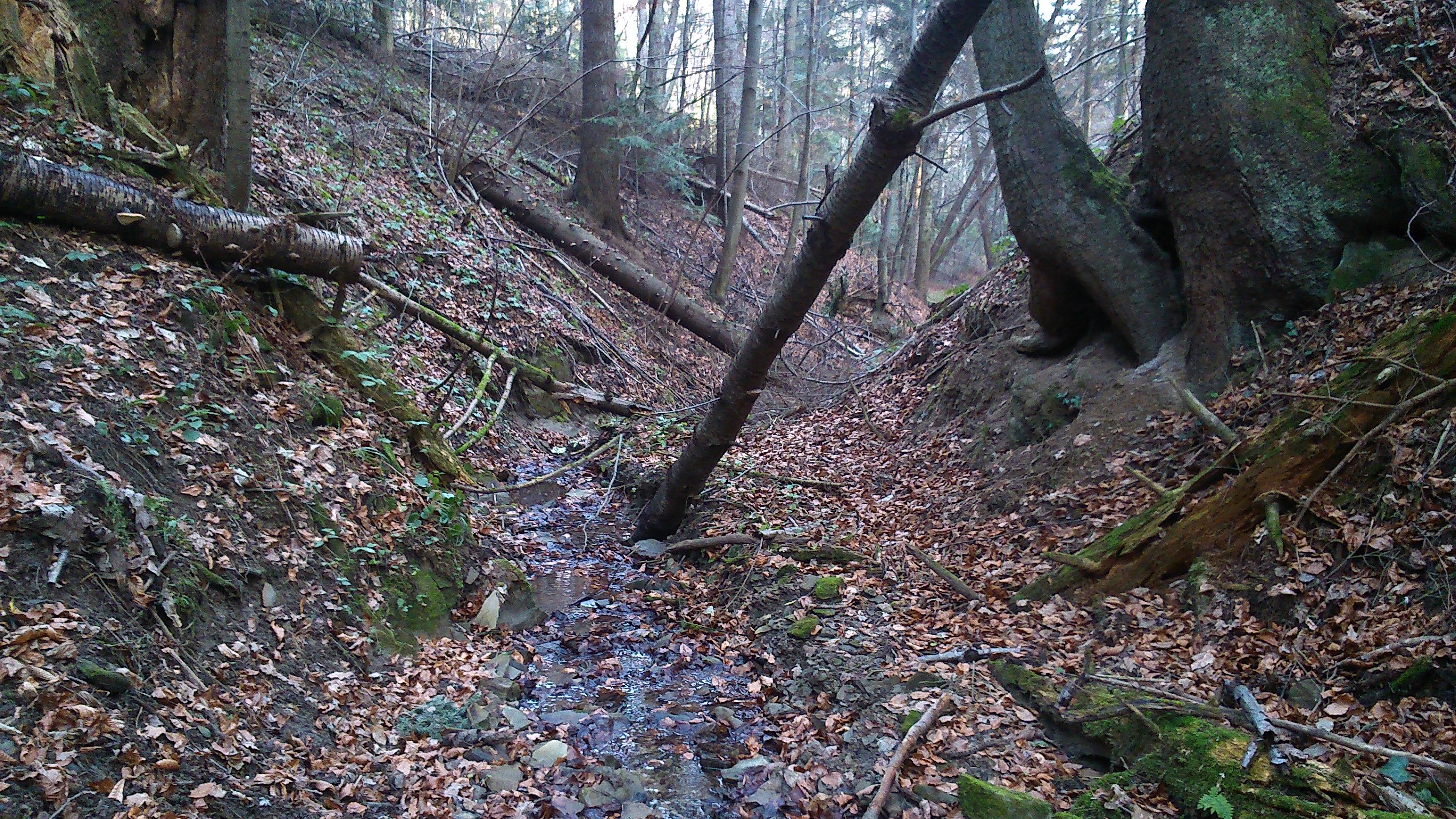 Teren w Beskidzie Niskiem nie należy do najłatwiejszych. 3-4 takie potoki w miocie potrafią zmęczyć