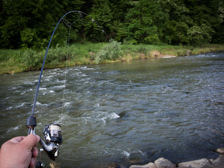 Wędka świetnie sprawuje się na małych i na większych rzekach